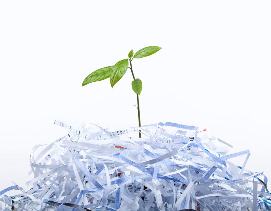 why cork confidential shredding